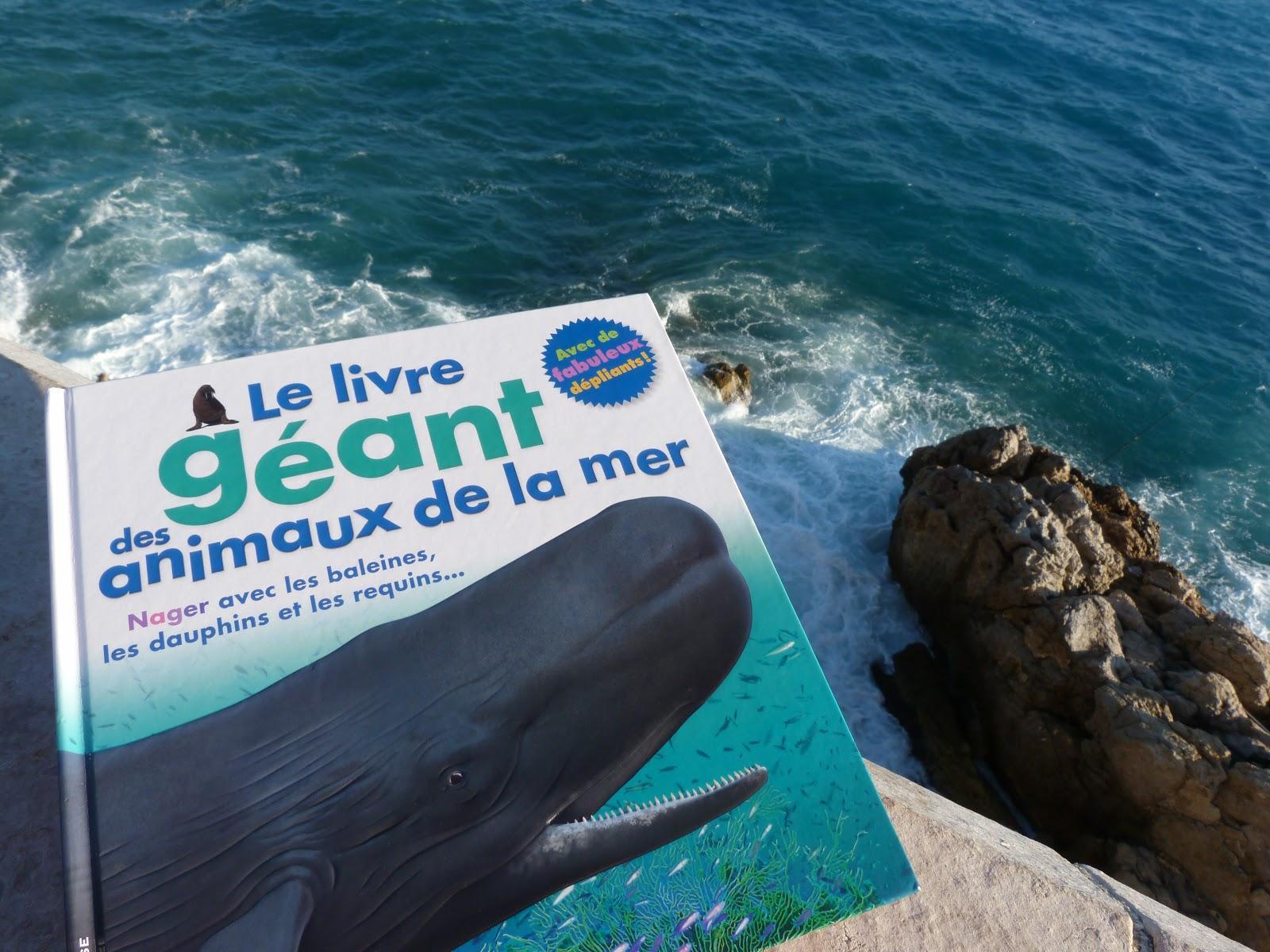 Le Livre Geant Des Animaux De La Mer 6 12 Ans La Vie