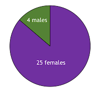 25 females and 4 males responded to the questionnaire