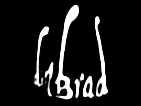 Din Brad_logo