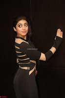 Pranitha Subhash in a skin tight backless brown gown at 64th Jio Filmfare Awards South ~  Exclusive 133.JPG