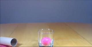 Percobaan Hukum Newton dengan Telur