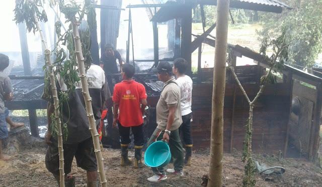 Kebakaran di Rantepao, Warga Pakai Air dari Sawah untuk Padamkan Api