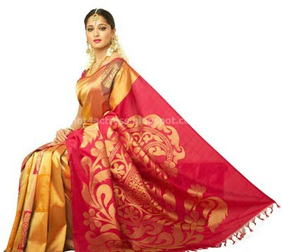 Anushka beautifull pictures in saree