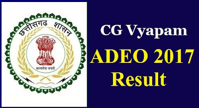 ADEO 2017 RESULT