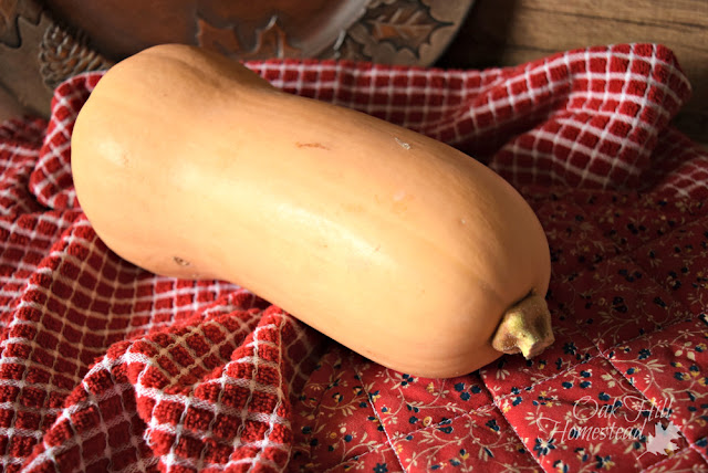 How many ways can you preserve squash and make into cold-weather comfort food over the winter?