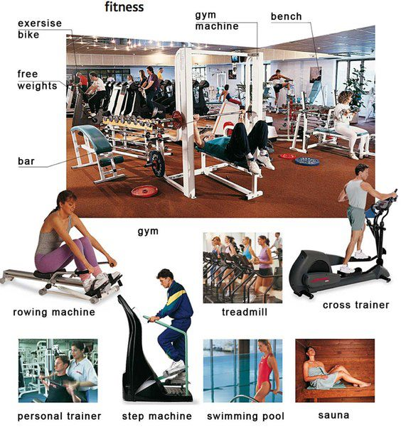 gym vocabulary