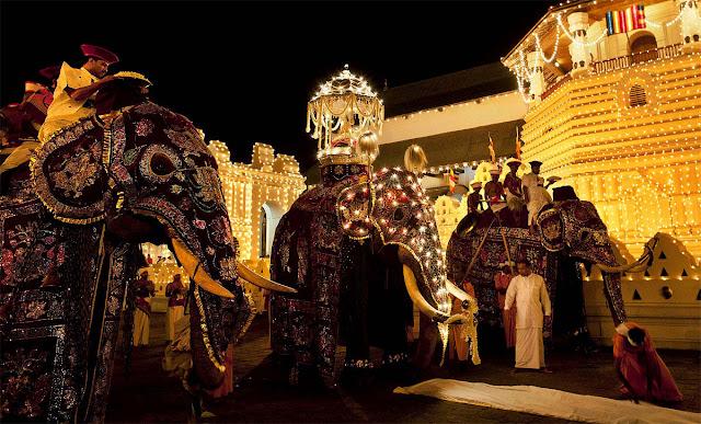 La Perahera au Sri Lanka : fête, culture et coutumes