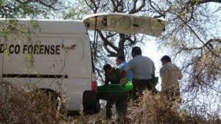 Hallan seis cuerpos descuartizados y más restos humanos en bolsas en Guanajuato