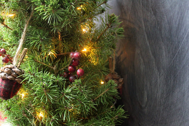 The beautiful tabletop Christmas trees from Jackson and Perkins will light up your holiday with no fuss and no mess!