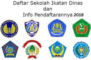 Cara Pendaftaran Online sscndikdin.bkn.go.id