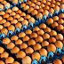 Huevos contaminados con pesticida, un escándalo que sacude Europa