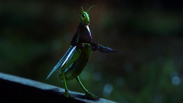 Mi insecto favorito