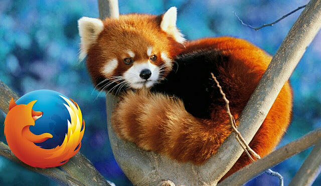 Red Panda Firefox logo fun facts