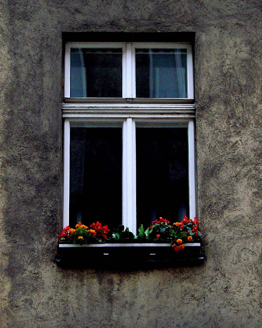 photo window with flowers vienna