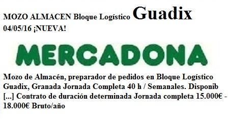Guadix, Granada, lanzadera de Empleo Virtual