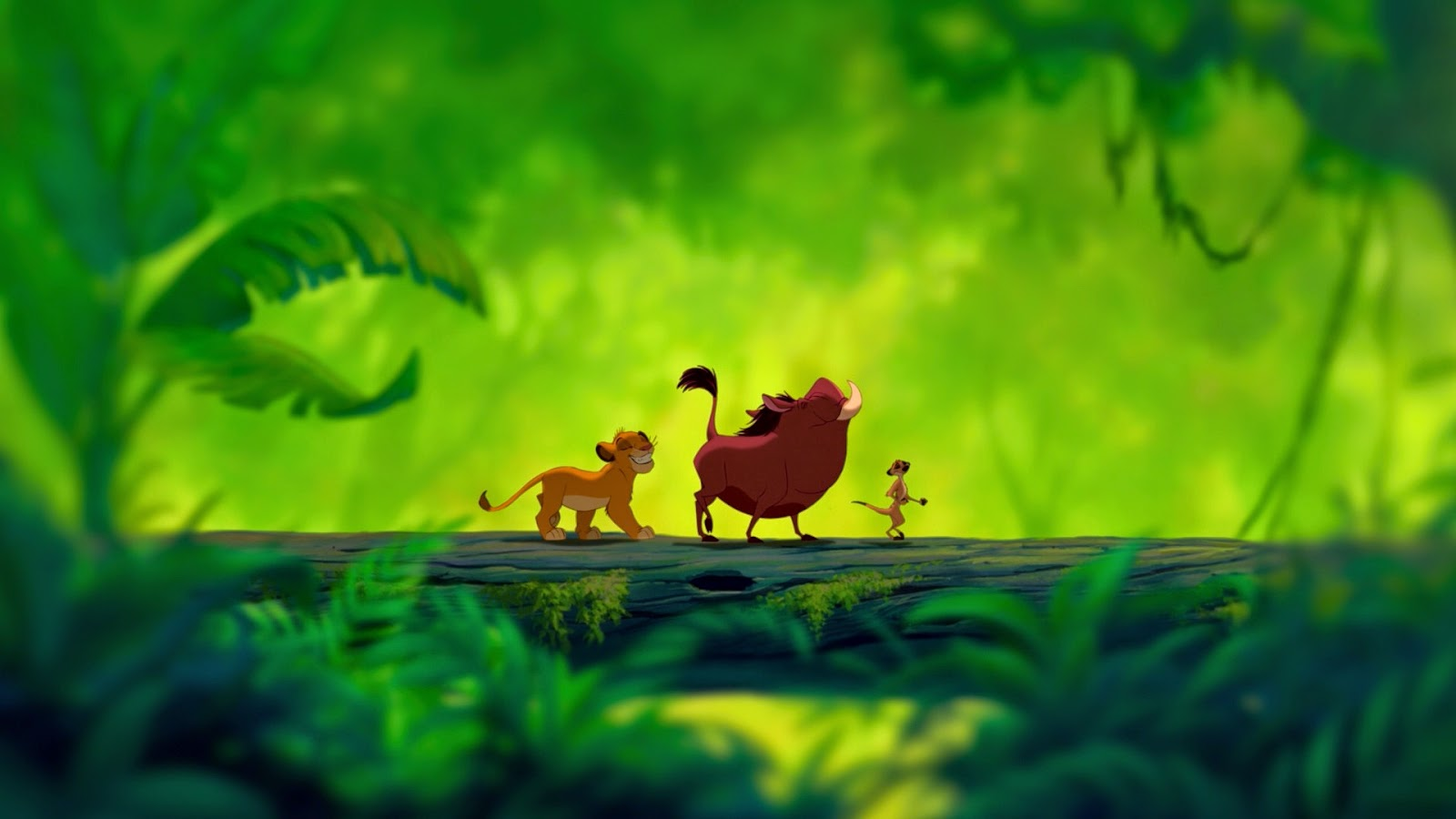 Lion king wallpapers hd beautiful wallpapers collection 2018 - Lion king wallpaper ...