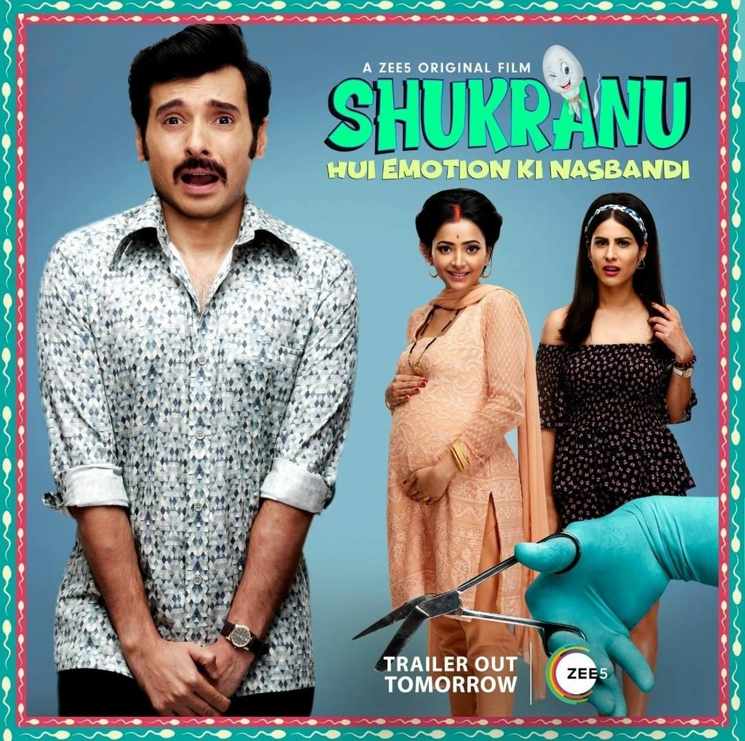 Shukranu (2020) Hindi 720p WEB-DL 1GB