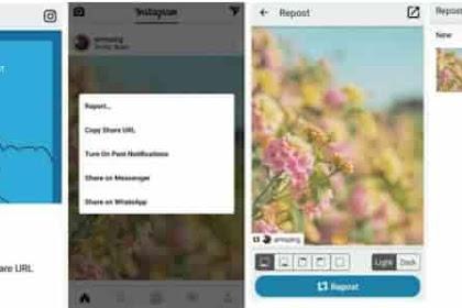 5 Cara Repost Instagram dan Captionnya (Foto atau Video)