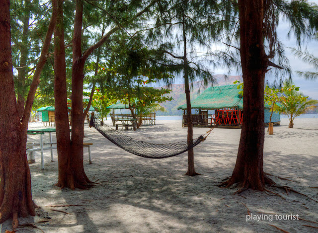 Agoho Trees and Hammock