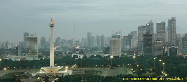 Obat Anti Rayap di Jakarta