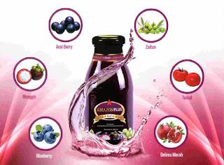 obat herbal stroke mujarab