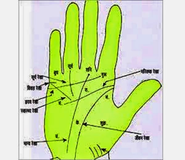 Jyotish- Quad On Palm