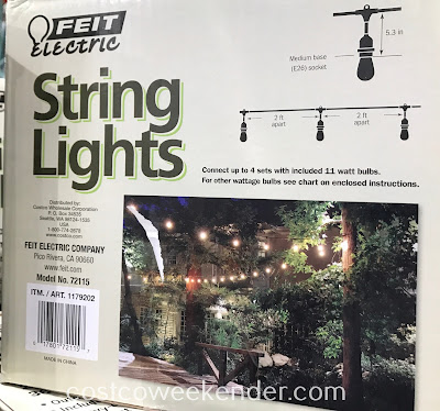 Feit Electric 48ft Incandescent String Lights (Model No. 72115): light up the night!