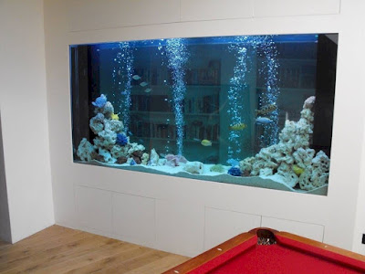 Model aquarium unik