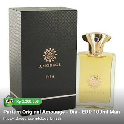 amouage dia edp 100ml man