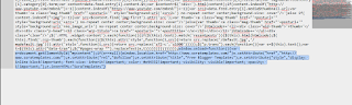 Screenshot showing code selected