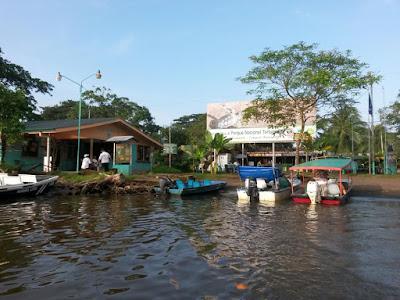 Tortuguero en el Caribe de Costa Rica