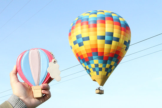Kate Spade Hot Air Balloon Coin Purse | Will Bake for Shoes