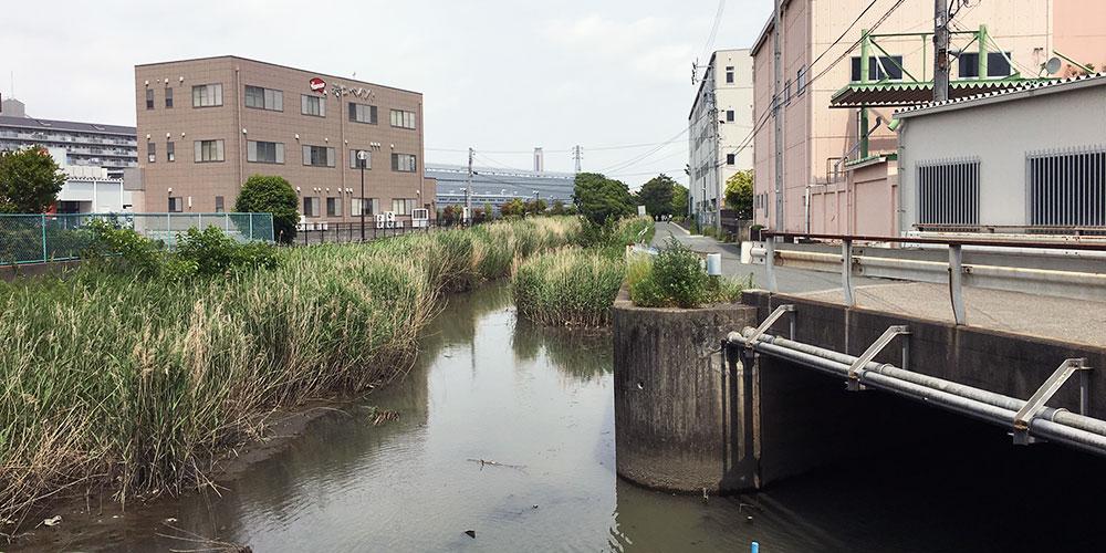 伊場遺跡の上を流れる堀留運河(2016年5月15日撮影)