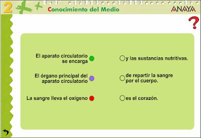 activitat3_aparell_circulatori
