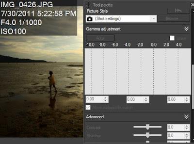 Pada file JPG kita tidak bisa merubah picture style di Canon DPP karena datanya sudah dibuah saat software kamera mengkompresi file foto menjadi file JPG