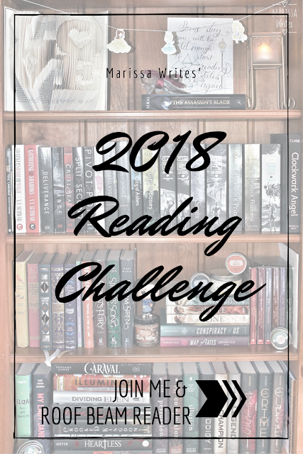 2018 TBR Pile Challenge on Reading List