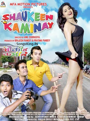 Shaukeen Kaminay 2016 Hindi 720p WEB HDRip 850mb
