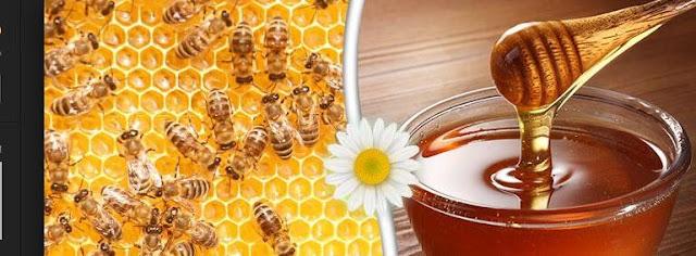 فوائد العسل الطبيعية للبشرة والشعر