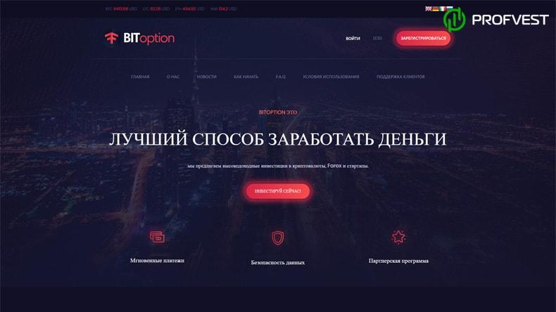 BitOption обзор и отзывы HYIP-проекта
