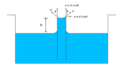 Expression for Capillary Rise