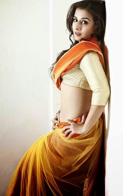 vidya-balan-in-sari