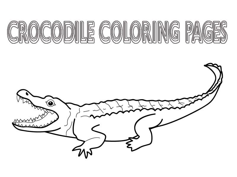printable coloring pages crocodile - photo #32
