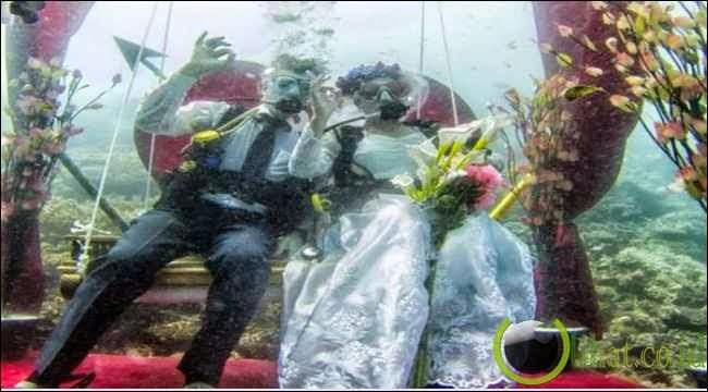 Pasangan Penyelam Menikah di Bawah Laut
