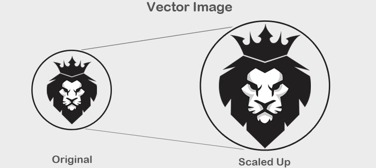 vector image in hindi