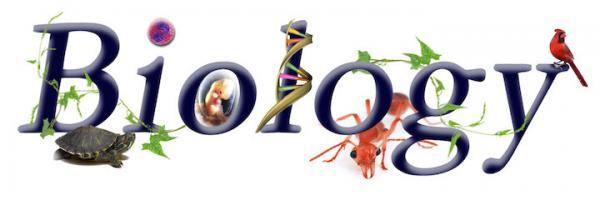 जीव विज्ञान के प्रश्न  उत्तर - भाग 3