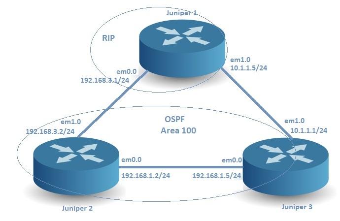 Juniper RIP OSPF Routes Redistribution