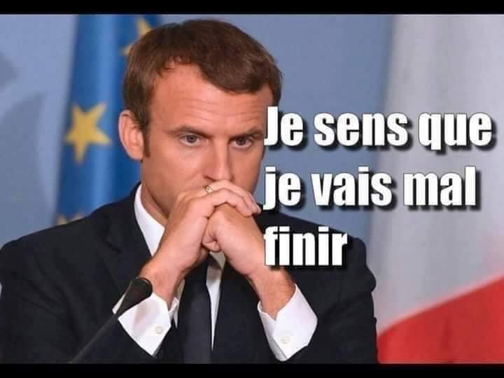 Pdf Bretagne Jmlebraud35 L Affaire Benalla Des Langues