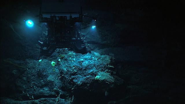 O limite das profundezas dos oceanos são rochas