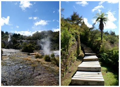 Orakei Korako Geothermal Experience Taupo New Zealand