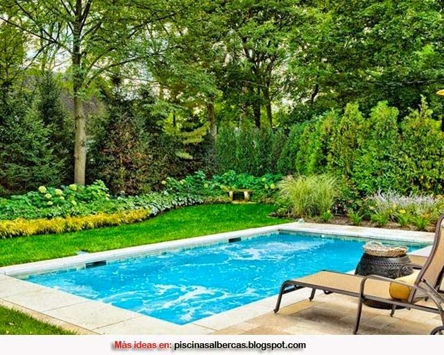 Dise o de piscinas peque as piscinas y albercas fotos for Diseno de piscinas residenciales